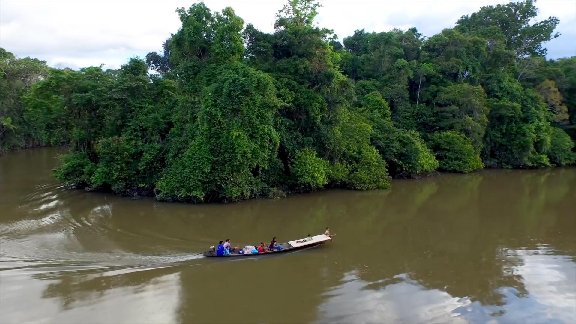 amazon river trips amazon river amazon lodge iquitos